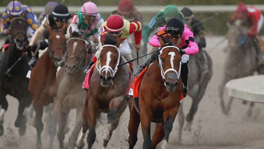 Sports That Of A Horse Race