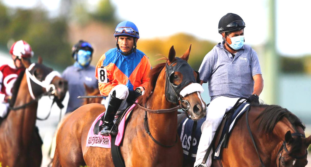 horse racing enthusiasts and jockeys